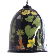 Canopy botanical bell jarsmall