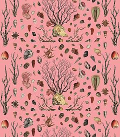Brown Coral Shell Pink Fabric